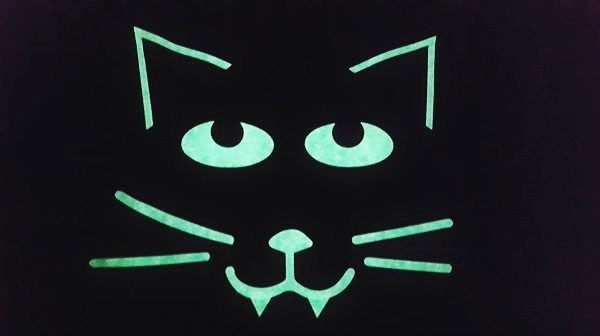 EasyWeed Glow lights up this cute black cat in the dark
