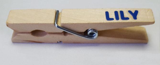 DIY Clothespin