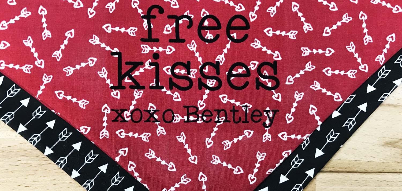 Diy Valentine S Day Dog Bandana Siser North America